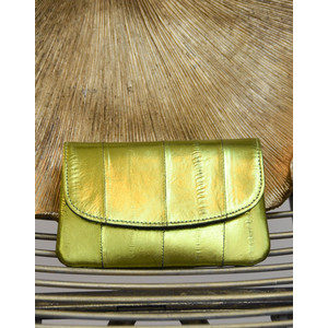 Handy Rainbow Purse Lime Green