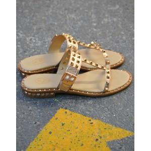 Prince Stud Buckle Sandal Gold/Rose Gold