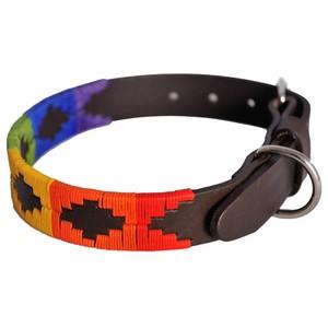 Rainbow Dog Collar Multicolour