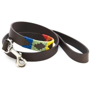 Rainbow Dog Lead Multicolour